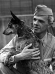 Photo, American soldier with cattle dog. . . , 1941-1945, Flickr Commons