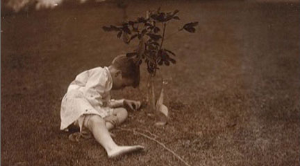 photographic print, Quentin Roosevelt Planting a Tree, c1904, Edward S. Curtis,